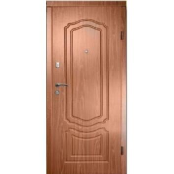 Двері в квартиру (50)